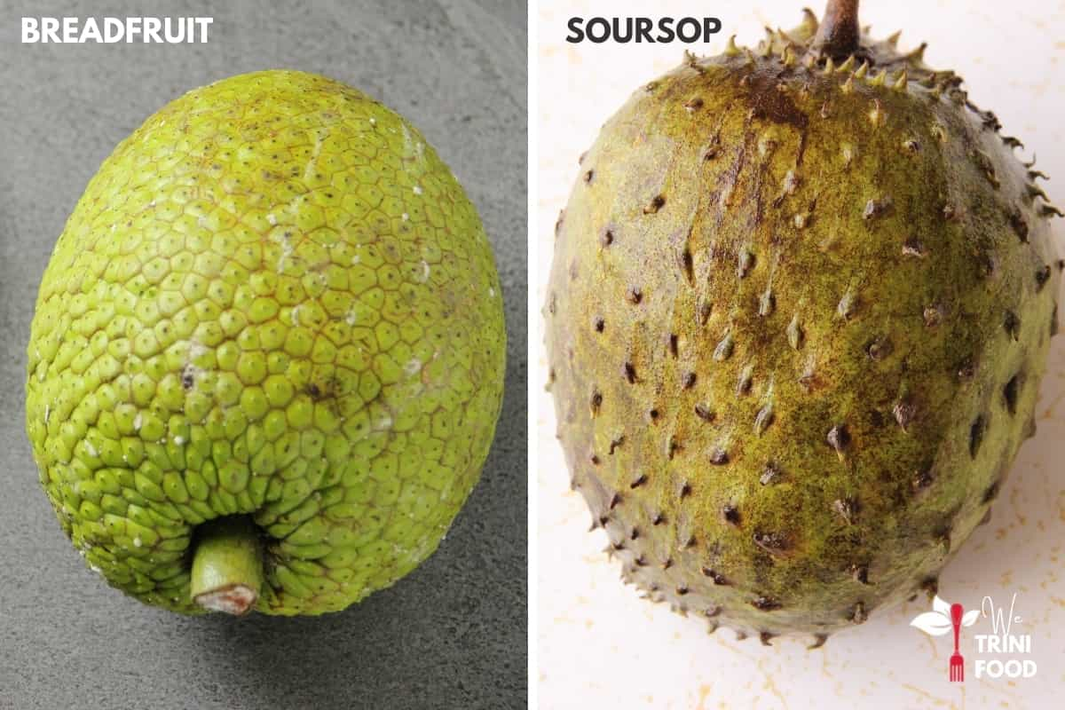 comparing breadfruit and sourop
